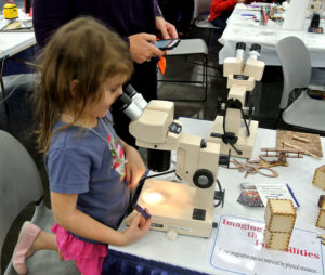 The stereo microscopes are always popular